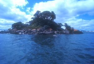 Motukaroro South