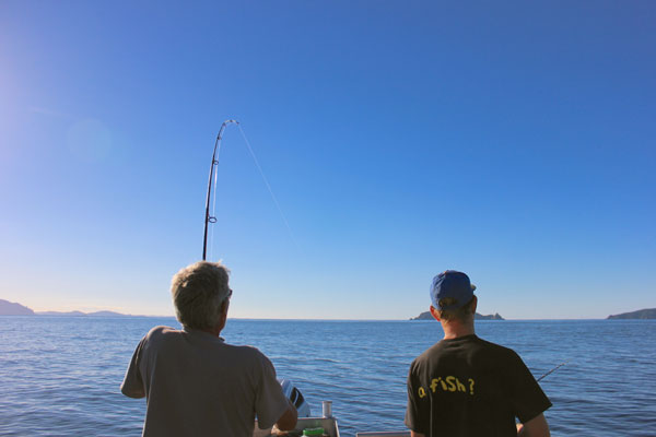 Fishing charters from Mangawhai - north of Auckland - to the Hen and Chicks with Fishmeister; a great fishing spot for snapper
