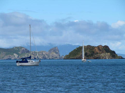 Fishing charters from Mangawhai, Northland (north of Auckland) - Great Barrier Island - photo by Beverley Davidson