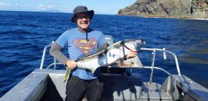 Lloyd's kingfish